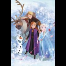 Disney Jégvarázs gyerek polár takaró 100*150 cm