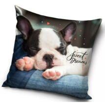 SWEET DREAMS francia bulldog kutyás gyerek párna