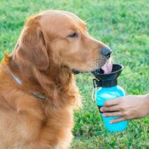 ALBERT hordozható kutya itató kistálkával