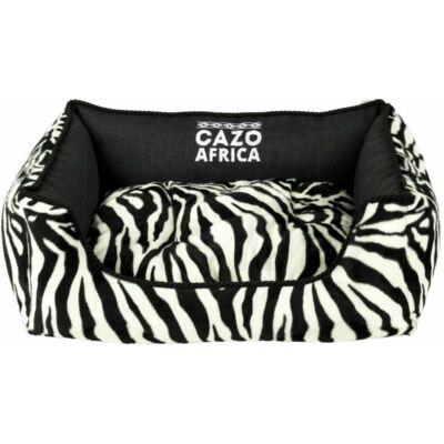 Africa kutyaágy