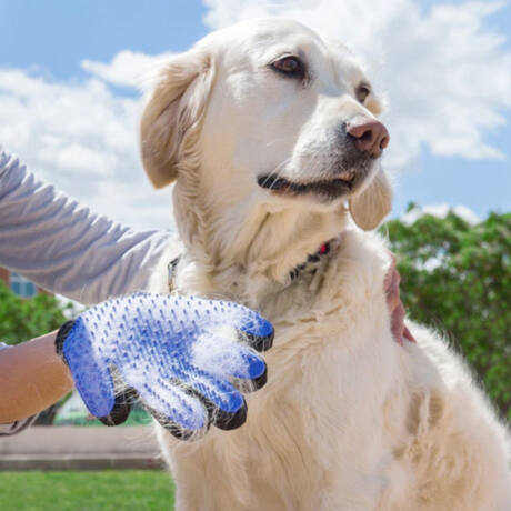 FUR GLOVE kutyaszőr eltávolító kesztyű