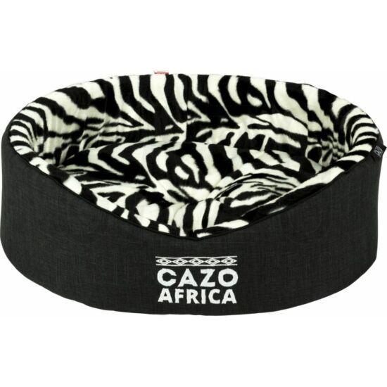 Africa Foam kutyaágy